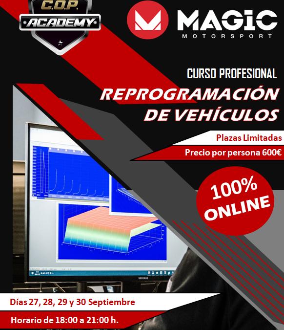¡¡¡Nuevo Curso Profesional Online de Reprogramación de vehículos¡¡¡